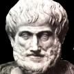avatar van Wally 61